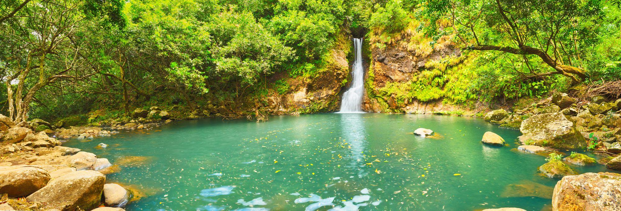 Scenic Cascade Chamouze waterfall, República de Mauricio