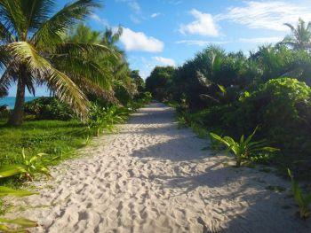 Escena de misterio isla Aneityum Vanuatu