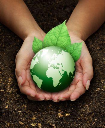 fertilizantes líquidos y orgánico-minerales