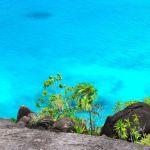 Presentación de informes obligatorios en Seychelles a partir de 2020