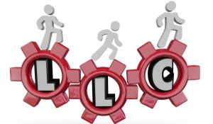 ¿Quiénes deberían establecer una sociedad LLC?