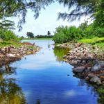 Proteja su futuro mediante un fideicomiso en la isla de Nieves